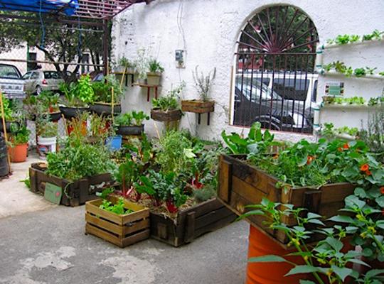 урбанистический сад