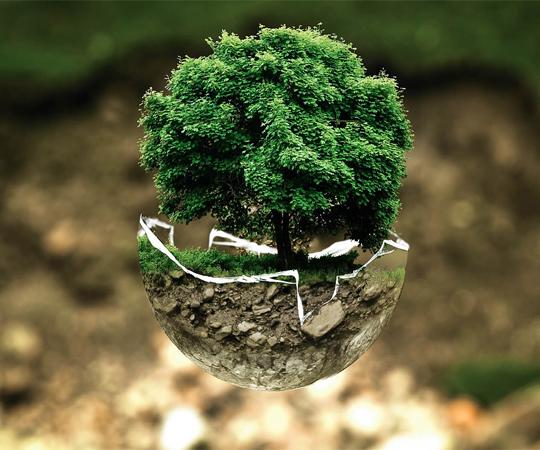 Что такое эко-френдли (eco-friendly)