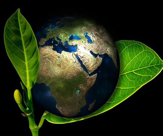 экологичный образ жизни