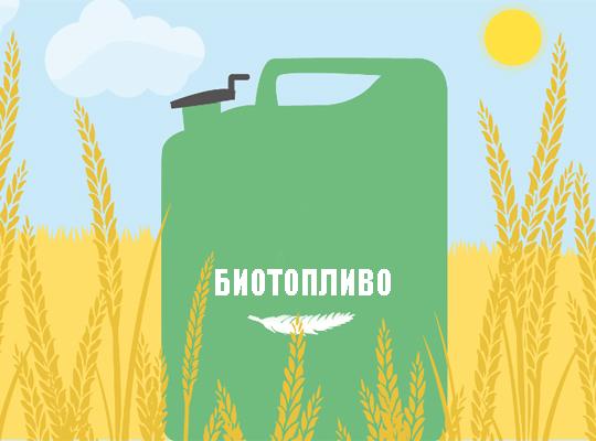 Биотопливо как способ получения энергии
