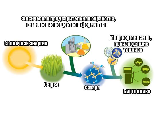 технологический процесс производства биотоплива