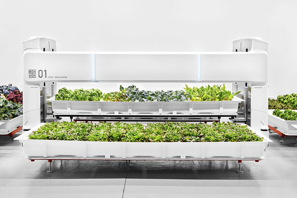 Автоматизированная ферма от компании Iron Ox