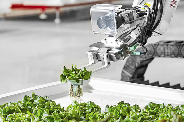 робототехника от компании Iron Ox