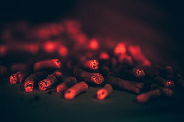 биотопливо Bio-bean