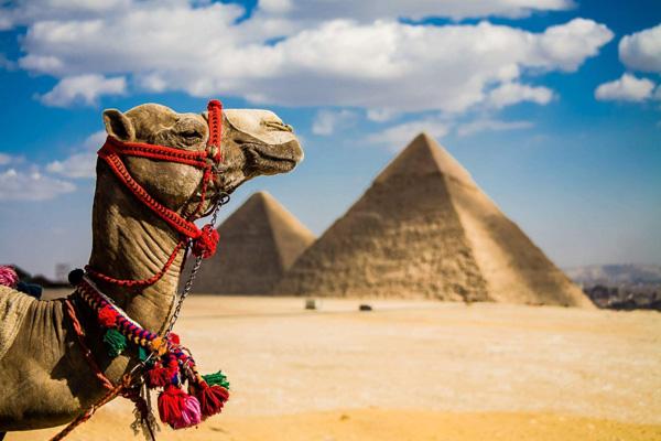 Пирамиды - одно из посещаемых мест на планете