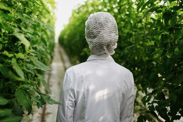 Что такое биотехнология: будущее уже наступило