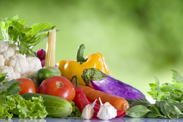 микроорганизмы для ферментации продуктов питания