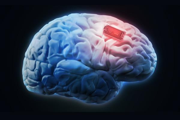 исследования Neuralink