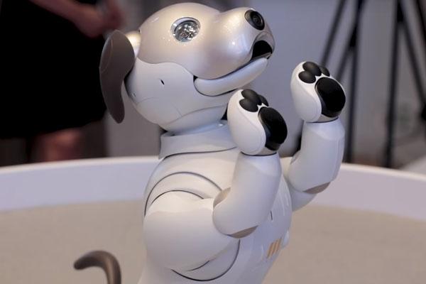 навыки робо-собаки Sony AIBO