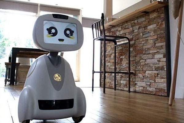 роботы в повседневной жизни человека