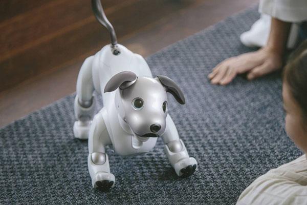 собака Sony AIBO