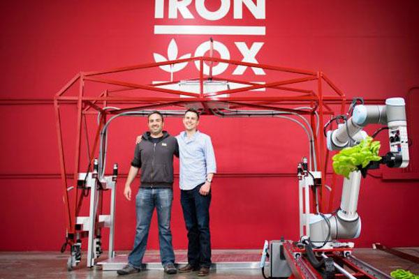 создатели автоматизированной фермы Iron Ox