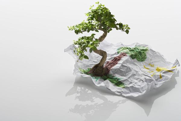 экологически чистые товары
