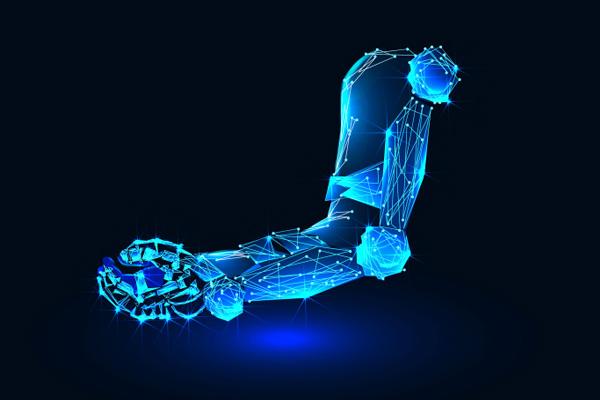 мышцы биогибридного робота