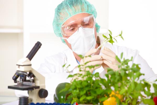 генная инженерия - экологические проблемы