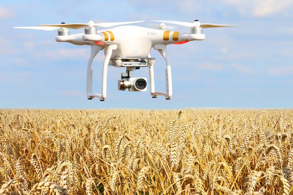 Преимущества дронов для сельского хозяйства