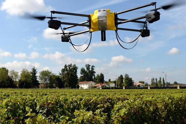 дроны для фермеров