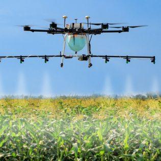 Роль дронов в аграрном секторе: новые помощники фермеров