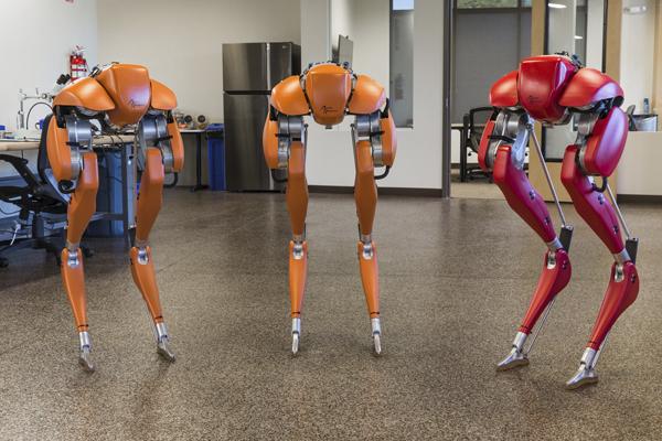 двуногий робот Agility Robotics Cassie