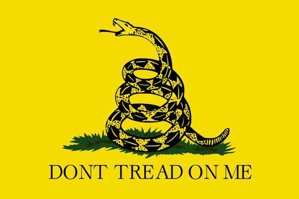 либертарианство флаг