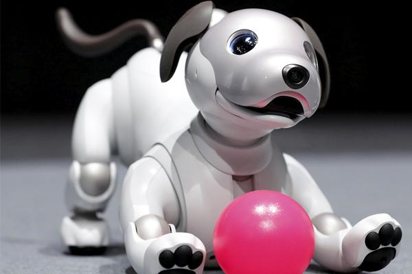 домашний робот-питомец AIDO