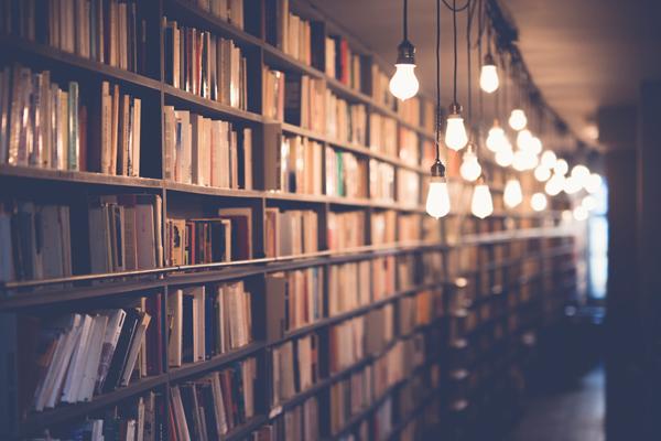 книги по гибкому мышлению