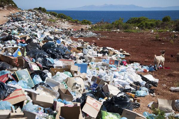 Концепция Zero Waste