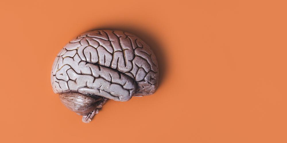 Когнитивистика: больше, чем наука
