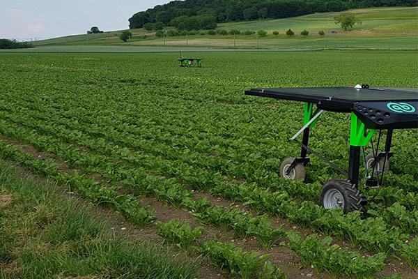 Автономные роботы в сельском хозяйстве