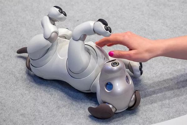 Автономные роботы виды
