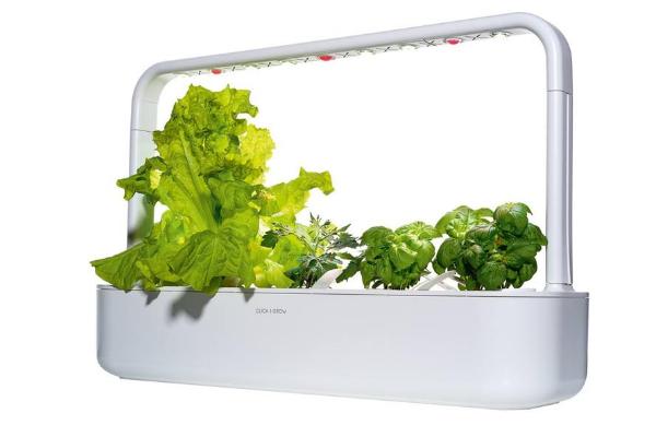 Click and Grow Smart Garden 9 умный огород