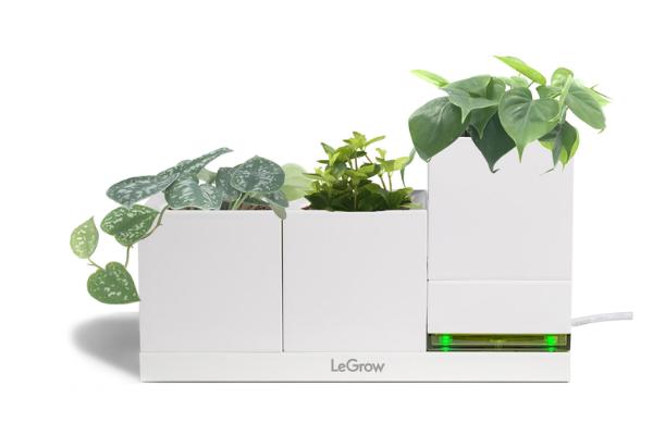 LeGrow Smart Garden умный горшок