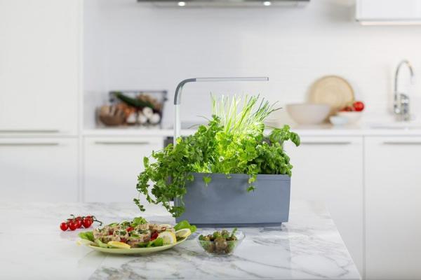 TREGREN Kitchen Garden умный вазон