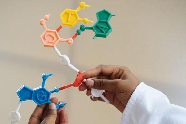 что такое генная инженерия