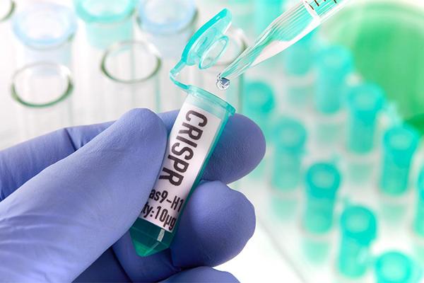 генная инженерия CRISPR