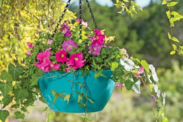 автополив растений Viva Self Watering Hanging Basket