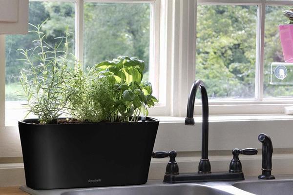 горшок с автополивом Aquaphoric Herb Garden Tub